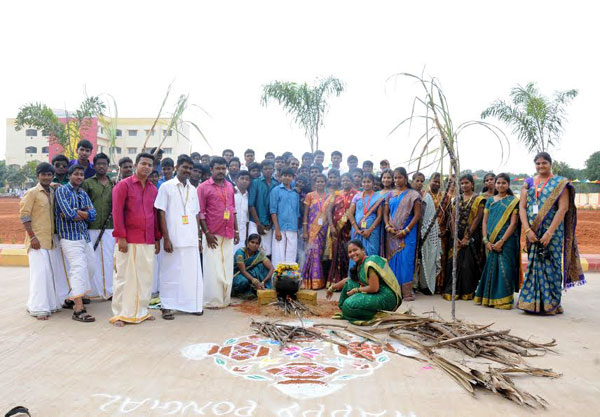 Pongal Celebration, on 09 Jan 2015